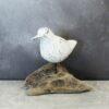 Bird - Bird on Natural Root Base - White